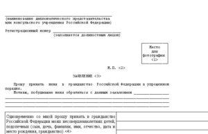 Подача на гражданство рф