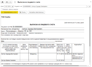 Справка выписка из лицевого счета
