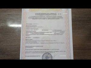 Свидетельство права собственности на квартиру 2019