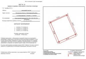Как делают межевание земельного участка по точкам или по забору