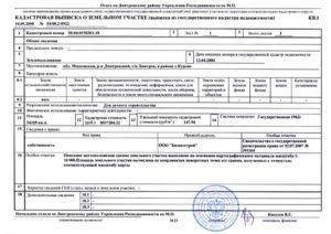Как заказать выписку из кадастрового паспорта на земельный участок