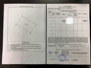 Межевание земельного участка какие документы нужны от соседей