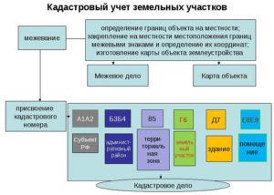Как поставить участок на кадастровый учет как ранее учтенный